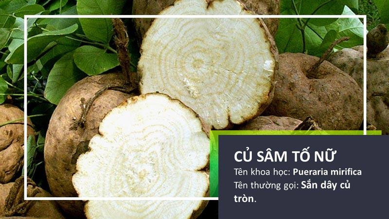 Phát hiện mới: Loài thảo dược có chứa hoạt tính estrogen gấp 1000-10.000 lần đậu nành và bột mầm đậu nành, 1