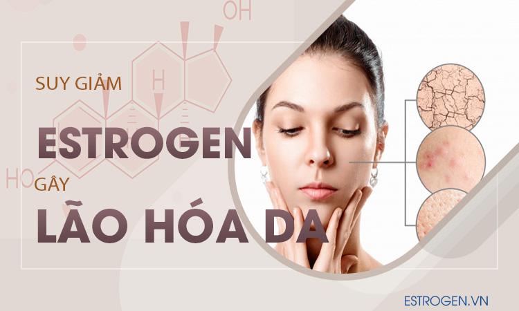 Suy giảm estrogen gây lão hóa da 1