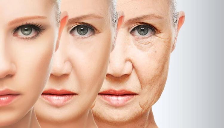 1 - Phụ nữ có kinh muộn thì suy giảm nội tiết tố muộn 1